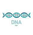 DNA spiral sign vector image vector image