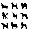 Dogs silhouettes vector image vector image