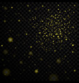 gold stars black night sky on transparent vector image vector image