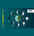 moon phases concept background flat style vector image