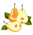 Pear whole and pieces vector image vector image