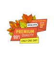 premium special offer one day super half price tag vector image vector image