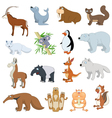 Various Wildlife Animals set vector image vector image