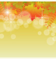 autumn background with flying leaves vector image vector image