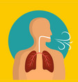 breathing lungs icon flat style vector image