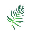 cartoon green fern plant icon vector image vector image
