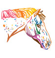 colorful decorative portrait of appaloosa horse vector image vector image