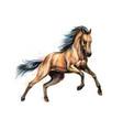 horse run gallop from splash watercolors hand vector image vector image