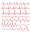 line cardiograms or electrocardiogram on vector image