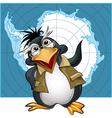 penguin lecturer vector image