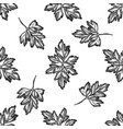 seamless pattern with black and white greenery vector image vector image