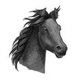 Artistic horse head sketch portrait vector image