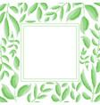 green leaves frame design vector image