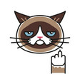 grumpy cat making gesture with middle finger vector image