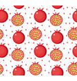 pomegranate seamless pattern garnet fruit endless vector image vector image