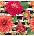 seamless pattern with red asters flowers floral vector image vector image