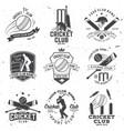 set cricket club badges concept vector image