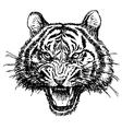 Tiger 1 vector image vector image