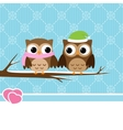 winter owl couple vector image