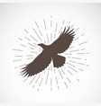 eagle on white background animal eagle symbol vector image
