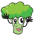 a broccoli vector image