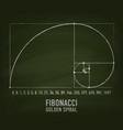 approximation golden ratio spiral fibonacci vector image