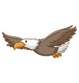 cute eagle flying on white background vector image