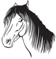 pony muzzle vector image vector image