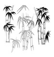 set tropical bamboo elements collection of vector image vector image