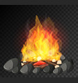 campfire with big flame and firewoods on black vector image vector image