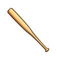classic wood baseball bat