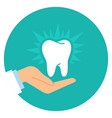 cartoon doctor hand and healthy tooth vector image