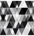 black and white abstract geometry pattern vector image vector image