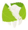 herbal tooth protect icon isometric style vector image vector image