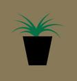 icon in flat design flower in pot aloe vector image vector image