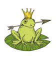 princess frog color sketch engraving vector image vector image