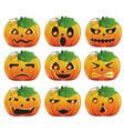 pumpkin expression vector image