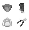 animal education and other monochrome icon in vector image