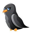 Cartoon raven vector image
