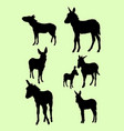 donkeys animal gesture silhouette vector image vector image