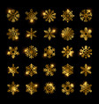 gold snowflakes set isolated on black vector image