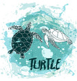 turtles swim in the ocean vector image vector image