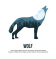 wolf double exposure vector image vector image