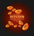 bitcoin payment background vector image vector image