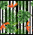 colorful tropical plant background seamless vector image vector image