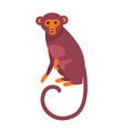 cute funny monkey with long thin tail vector image