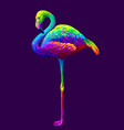flamingo abstract artistic multi-colored image vector image