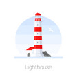 lighthouse tower with seagull vector image vector image