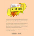 limited time only buy now discount promo poster vector image vector image
