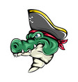 pirates crocodile using pirates hat for vector image